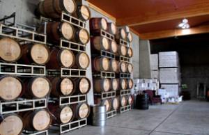 Szabo Winery 09 Sm